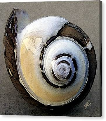 Canvas Print featuring the photograph Seashells Spectacular No 3 by Ben and Raisa Gertsberg