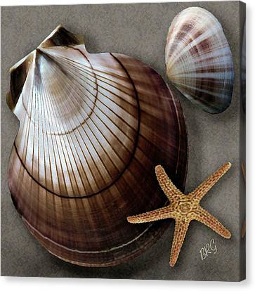 Canvas Print featuring the photograph Seashells Spectacular No 38 by Ben and Raisa Gertsberg