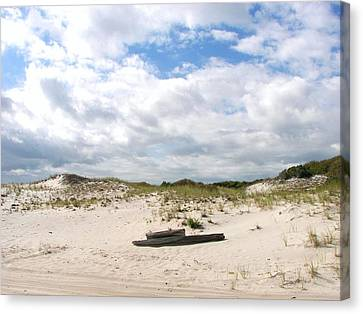 Canvas Print featuring the photograph Seaside Driftwood And Dunes by Pamela Hyde Wilson