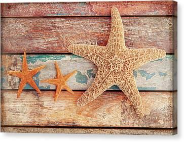 Starfish Canvas Print - Seaside Memories by Cora Niele