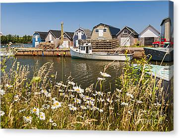 Seaside View Of Prince Edward Island Canvas Print by Elena Elisseeva
