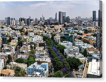 Canvas Print featuring the photograph season change at Rothschild boulevard  by Ron Shoshani