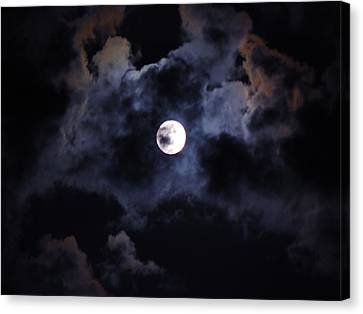 Seasonal Blue Moon IIi Canvas Print