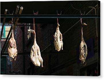 Seasoning Peking Ducks Hanging For Sale Canvas Print by Panoramic Images