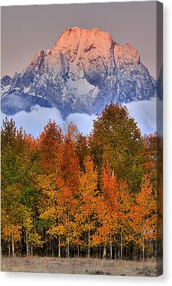 Seasons Change Canvas Print by Aaron Whittemore
