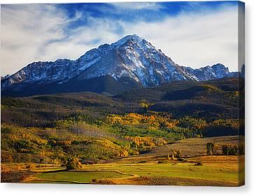 Seasons Change Canvas Print by Darren  White