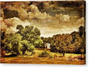 Seasons Change Canvas Print by Lois Bryan