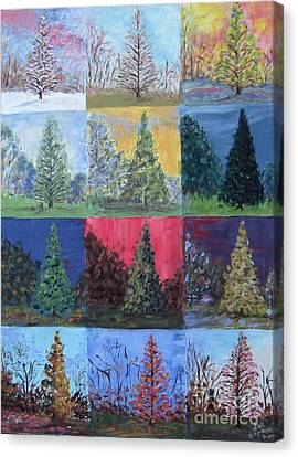 Seasons Of A Dawn Redwood - Sold Canvas Print