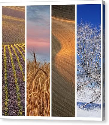 Contour Farming Canvas Print - Seasons Of The Palouse by Latah Trail Foundation