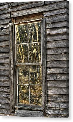 Seasons Past Canvas Print by Benanne Stiens