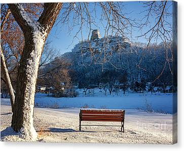 Seat With A View In Winter Canvas Print by Kari Yearous
