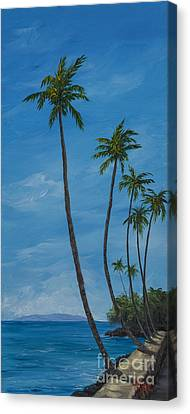 Seawall Palms Canvas Print by Darice Machel McGuire