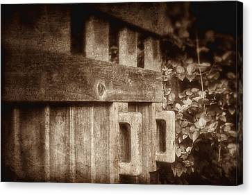 Secluded Garden Canvas Print by Tom Mc Nemar