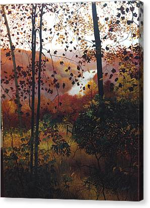 Secluded View Canvas Print by David Bottini