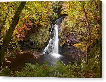 Secluded Waterfall Canvas Print