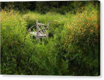 Seclusion Canvas Print by Bill Wakeley