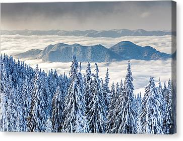 Second Level Canvas Print by Evgeni Dinev