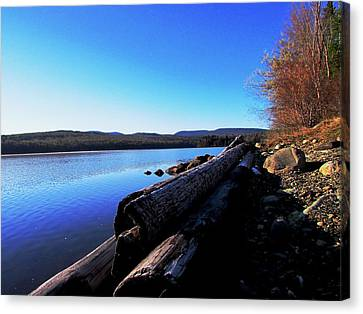 Second Shoreline Canvas Print by Will Boutin Photos