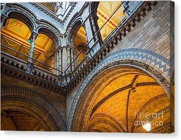 Second Story Canvas Print by Inge Johnsson