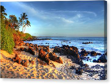 Secret Cove  Canvas Print by Kelly Wade