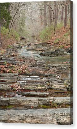Secret Creek Canvas Print