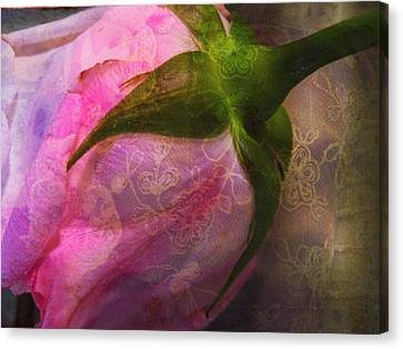 Secret Passion Canvas Print by Shirley Sirois