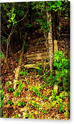 Canvas Print featuring the photograph Secret Stairway by Bartz Johnson