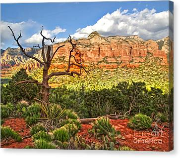 Sedona Arizona Dead Tree - 03 Canvas Print by Gregory Dyer