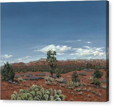 Sedona Cactus Az Canvas Print by Edward Williams