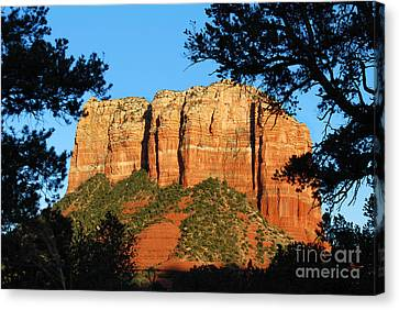 Sedona Courthouse Butte  Canvas Print