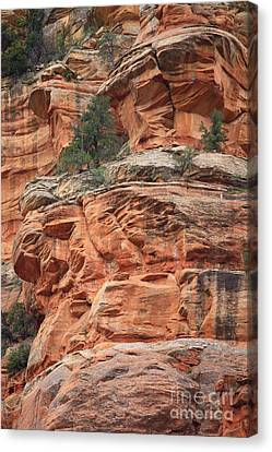 Sedona Sandstone Cliff Canvas Print