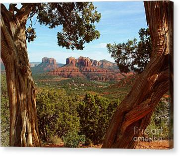 Sedona Vista Canvas Print by Marilyn Smith