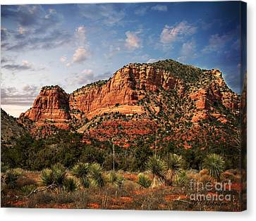 Canvas Print featuring the photograph Sedona Vortex  And Yucca by Barbara Chichester