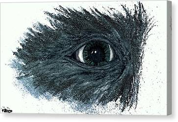 See What I See Canvas Print by Pamela Blayney