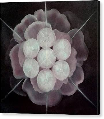 Seed Of Life Canvas Print by Cyndi Bartlett