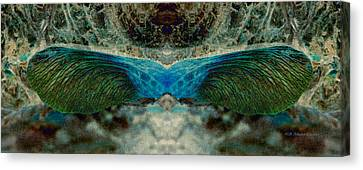 Seedwings Canvas Print by WB Johnston