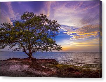 Storm Canvas Print - Seeing Is Believing by Marvin Spates