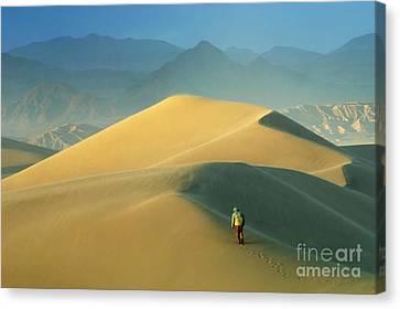 Seeking Solitude  Canvas Print by Bob Christopher