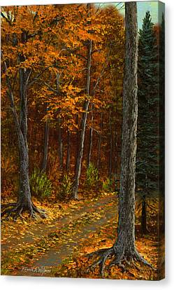 Seldom Used Canvas Print by Frank Wilson