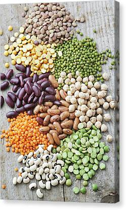 Selection Of Beans Canvas Print