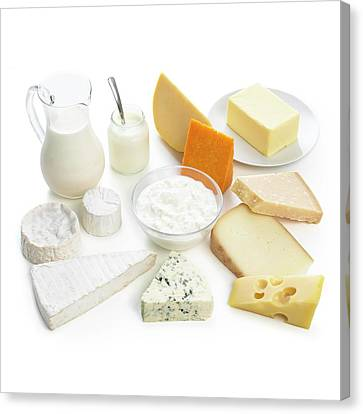 Selection Of Dairy Foods Canvas Print by Science Photo Library