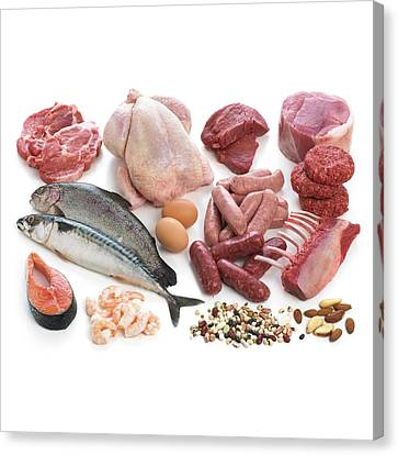Selection Of Fish And Meats Canvas Print by Science Photo Library