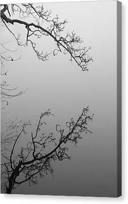 Self-reflection Canvas Print by Luke Moore