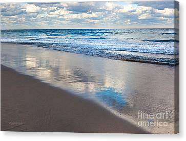 Self Reflection Canvas Print by Michelle Wiarda