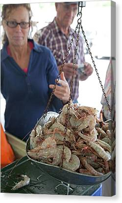 Selling Shrimp Canvas Print by Jim West