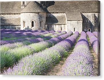 Senanque Abbey And Its Lavender Field - Provence - France Canvas Print