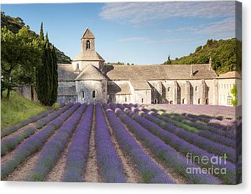 Senanque Abbey And Lavender Field - Provence - France Canvas Print