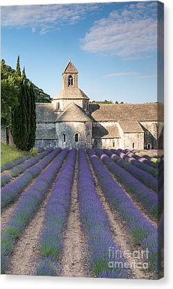 Senanque Abbey And Lavender Fields - Provence - France Canvas Print