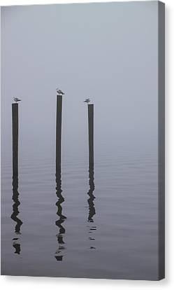 Seneca Lake Morning Mist Canvas Print