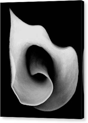 Canvas Print featuring the photograph Sensitive Spirit by The Art Of Marilyn Ridoutt-Greene